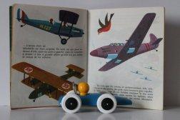 livre pour enfants Alain Grée.